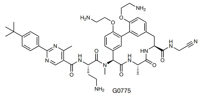 Антибиотик G0775. Медицинские новости, здоровье. МедЭксперт