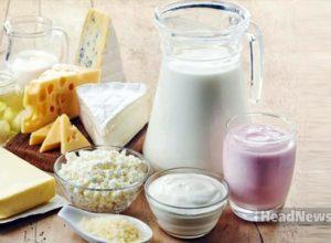 Молочная еда. Медицинские новости, здоровье. МедЭксперт
